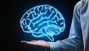 ما هي الذاكرة البشريه ؟