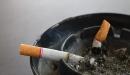 ما هو التدخين ؟